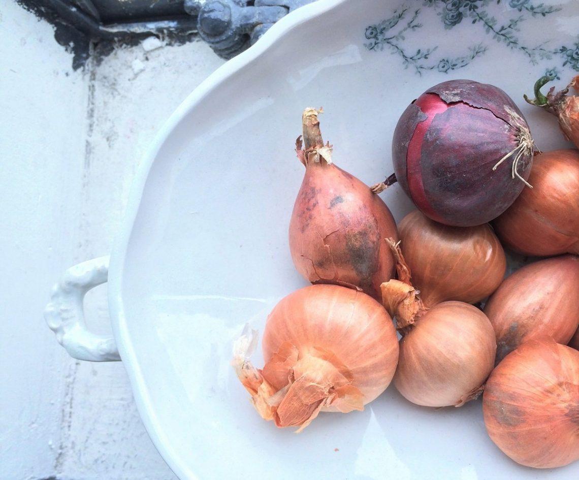 bewust en duurzaam eten met slowfood