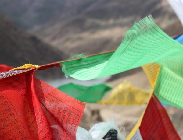boeddhistische media