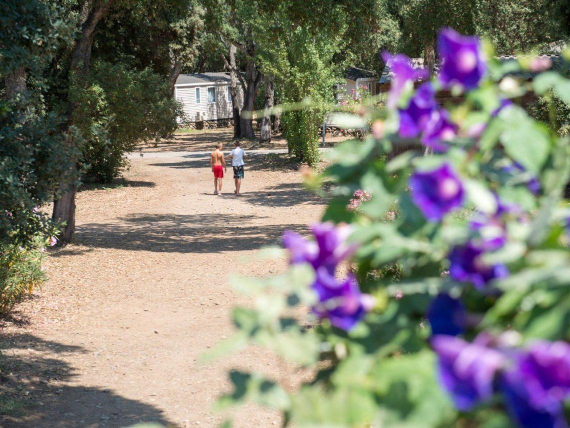 camping in natuur corsica