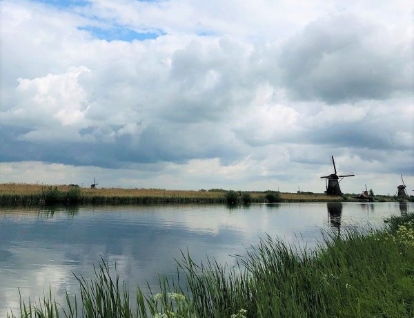 trots op nederland