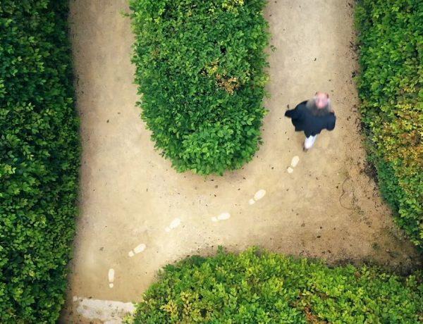 levensvragen en zelfbeeld van een filosoof