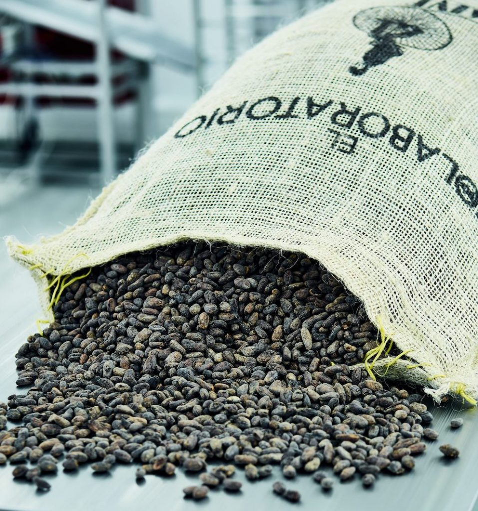cacaobonen voor fair trade