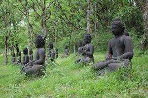 lessen uit een boeddhistische klooster